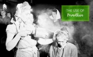Head lice treatment from many, many years ago.